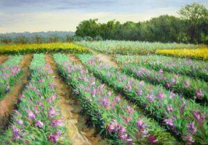 Tranh sơn dầu cánh đồng hoa