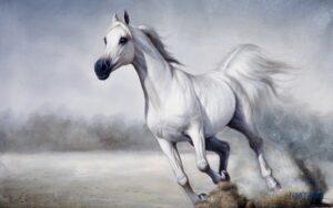 Tranh dán tường 3D Ngựa bạch dũng mãnh
