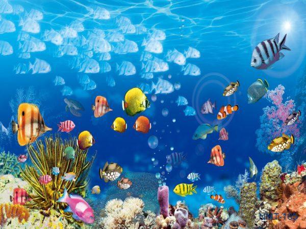 Tranh dán tường 3D Dưới đáy đại dương