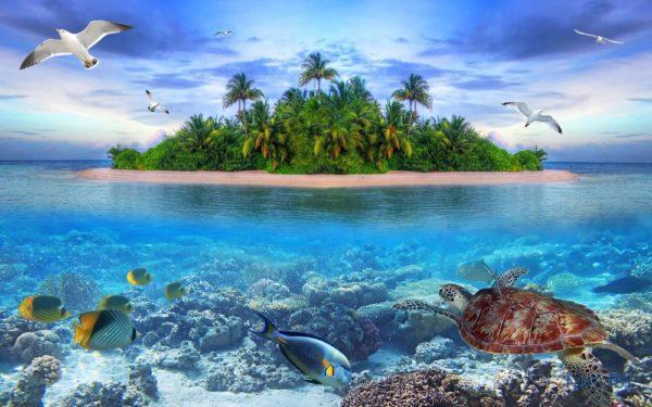 Tranh dán tường 3D Nơi biển xanh