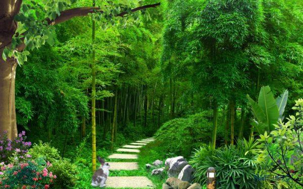 Tranh dán tường 3D Khu vườn xinh đẹp