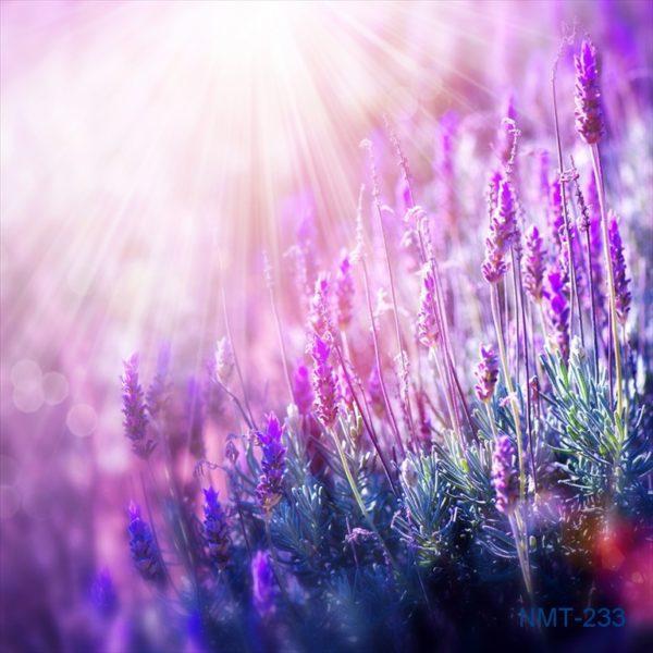 Tranh dán tường 3D Violet trong nắng hạ
