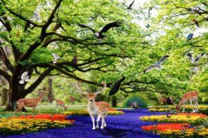 Tranh dán tường 3D khu vườn thiên nhiên