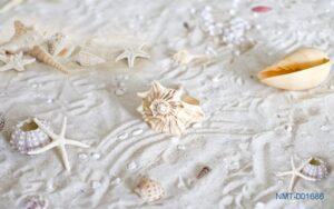 Tranh dán tường 3D trên nền cát trắng