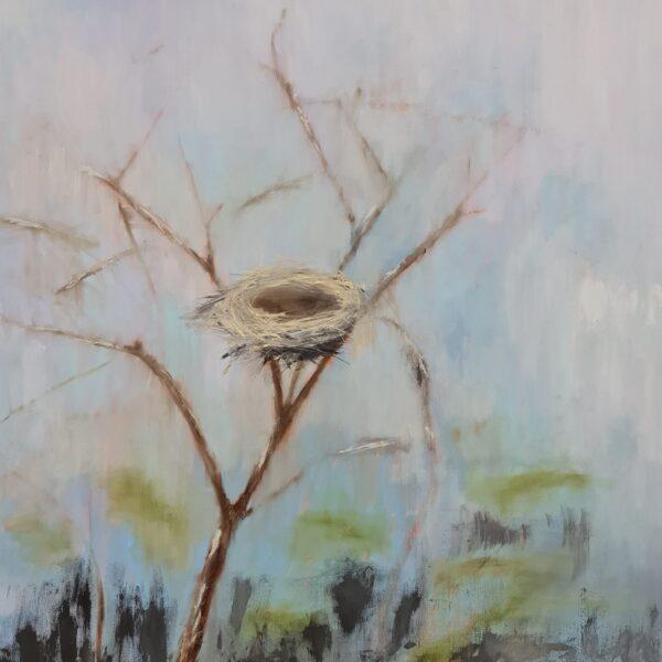 Tổ chim