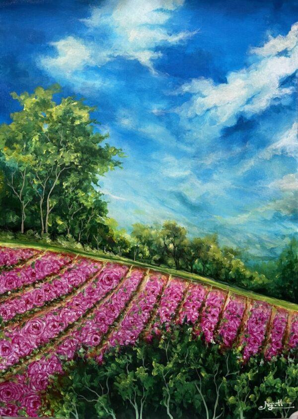 Vườn hồng dịu êm