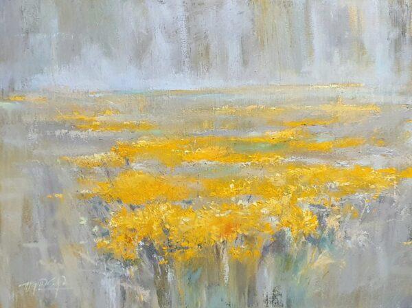Cánh đồng hoa cúc vàng